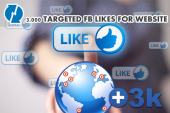 3000-real-targeted-facebook-likes-for-websites