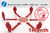 real-human-traffic-1month-hq
